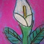 Chalk Calla
